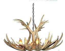 Antler Chandelier Canada Canadian Antler Design Mule Deer 6 Light Brown Antler