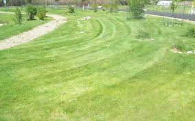durango lawn care and maintenance services fleming landscaping