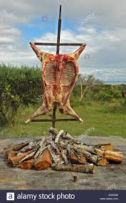 The Firepit Boar Barbecue Roast Pig In The Firepit Stock Photo