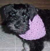 bandana crochet pattern free crochet pattern courtesy of
