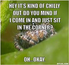 Sad Spider Meme - spiders memes spiders are getting smart as fuark bodybuilding