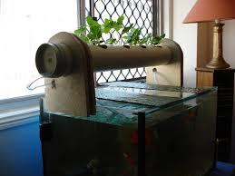 Backyard Aquaponics System Design Images Home Design - Backyard aquaponics system design