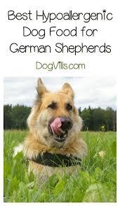 62 best Dog Health Information images on Pinterest