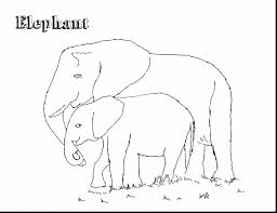 unbelievable elephants coloring pages realistic with elephant