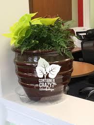 indoor office pots u2013 container gardens ct