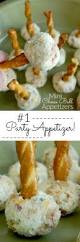 the 25 best cold appetisers ideas on pinterest cold party