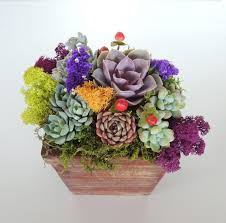 succulent centerpieces san diego delivery only urban succulents