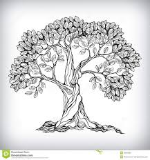 50 tree of tattoos designs cool tree drawings athomeintn