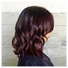 rich cherry hair colour short and rich dark cherry hair n color s style pinterest