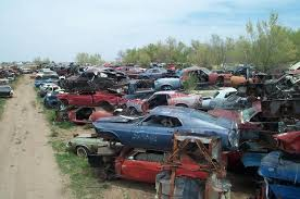 mustang salvage yard largest mustang s largest ford mustang salvage yard