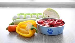 is raw food diet safe for dogs