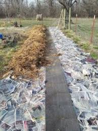 124 best straw bale and lasagna layering gardening images on