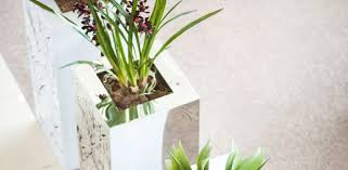 francisco plant couture u2013 pots planters and couture interior features