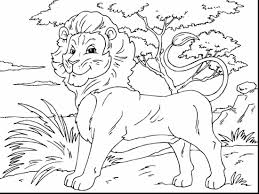 stunning printable lion coloring pages with lion coloring page