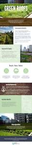 best 25 green roofs ideas on pinterest living roofs roof