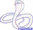 how to draw cobras