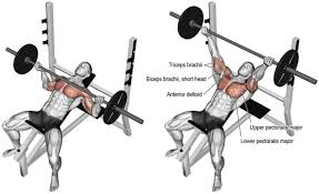 Tricep Close Grip Bench Press What Everyone Ought To Know About The Reverse Grip Bench Press