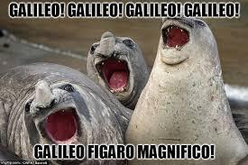 Galileo Meme - seal bohemian rhapsody imgflip