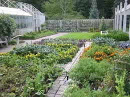 vegetables planning and preparing extension