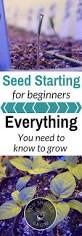 Spreadsheets For Beginners Seed Starting For Beginners You Should Grow