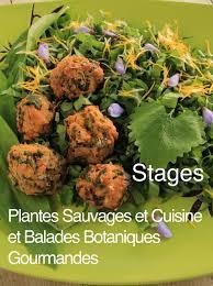 cuisine plantes sauvages stage plantes sauvages et cuisine le dimanche 7 août 2016 à armes