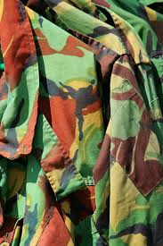 what color is camouflage wonderopolis
