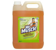 Laminate Floor Polish Johnsons Diversey Mr Muscle Floor Cleaner