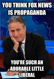 Propaganda Meme - you think fox news is propaganda you re such an adorable little