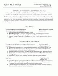 Sample Combination Resume Example by Download Resume For Stay At Home Mom Returning To Work Examples