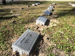 infant headstones evergreen cemetery works to anonymous infant wuft news