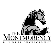 photoshop u0026 vector illustration logo design templates graceful horse