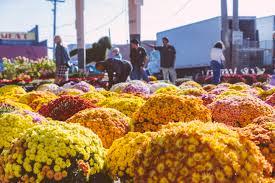 specialty markets eastern market