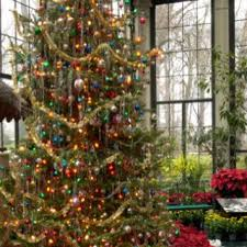 Decorative Christmas Tree Garland by 434 Best Holiday Tree Magic Images On Pinterest Christmas Time