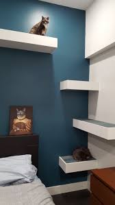 Modern Cat Trees Furniture by 315 Best Cat Trees Images On Pinterest Cat Stuff Cat Furniture