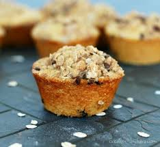 toasted oatmeal chocolate chip muffins