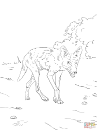 brush wolf or coyote coloring page free printable coloring pages