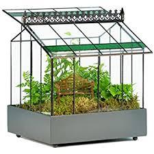 amazon com h potter glass terrarium indoor succulent planter