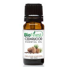 tulip essential oil 100 pure undiluted therapeutic grade
