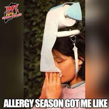 allergy season got me like random stuff pinterest allergies