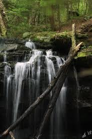 Basement Waterproofing Harrisburg Pa 411 Best Pennsylvania Images On Pinterest Pennsylvania