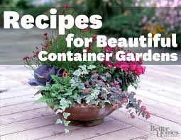 Plant Combination Ideas For Container Gardens - recipes for beautiful container gardens gardens plants and
