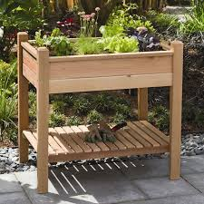 Build an Elevated Planter Box and save your back
