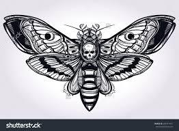 best 25 moth symbolism ideas on pinterest moth tattoo moth