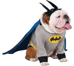 cincinnati bengals halloween costume rubie u0027s batman pet costume for big dogs large u2014 qvc com