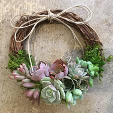 succulent wreath succulent wreath small 6 grapevine with