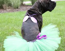 Big Dog Halloween Costume Mermaid Dog Costume Etsy