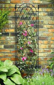 Garden Trellis Design Superb Metal Garden Trellises Wire Garden Trellises Sandraregev Com