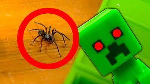 nasty spider in the minecraft toys nerf gun spider strike youtube