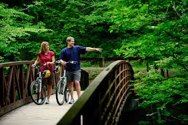 Show Me A Map Of Tennessee by Find Your Way Around In Gatlinburg Gatlinburg Tn Maps