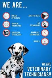 Vet Tech Memes - what is a veterinary technician fieldstation co